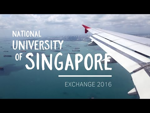 National University of Singapore Exchange