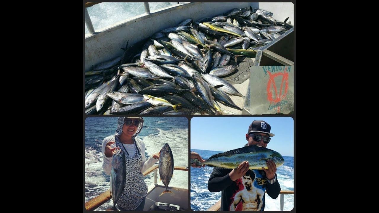 San Diego Fishing Vendetta Round 2 Yellowfin Tuna