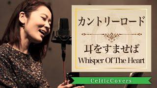 ジブリの名曲たちをケルティックアレンジでカバー!! 「Celtic Covers2-ジブリCollection-」NOW ON SALE!! 12曲入り/2000円(税込) M1 さんぽ [ となりのトト...