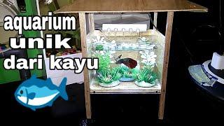 iseng iseng bikin aquarium mini & unik dari kayu