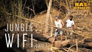 Jungle WiFi..finding a Bamboo Antenna with Coppy!
