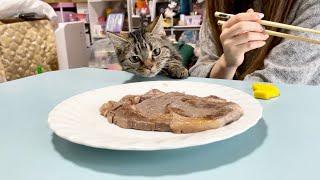 ステーキに目が眩んで横取りしにきてしまった子猫w
