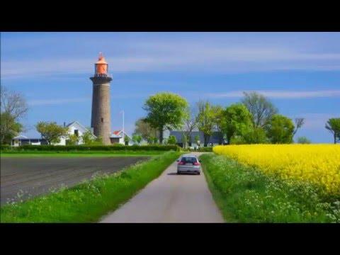 Frühlings Rapsfelder/ Dänemark/ Djursland