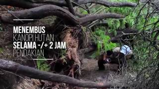 Download Lagu Jalur Baru Pendakian Gunung Papandayan mp3