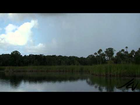 Florida Travel -  Around Crystal River Beauty, Nature and Nu