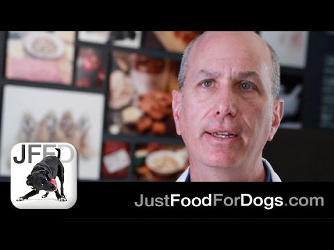 The Specialists: Ethoxyquin | JustFoodForDogs