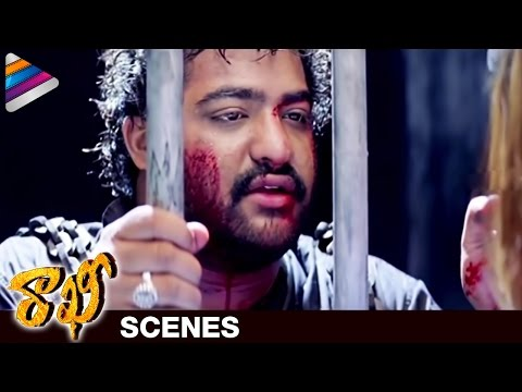 NTR gets Emotional with Suhasini | Rakhee Telugu Movie Scenes | Ileana | Charmi | Telugu Filmnagar