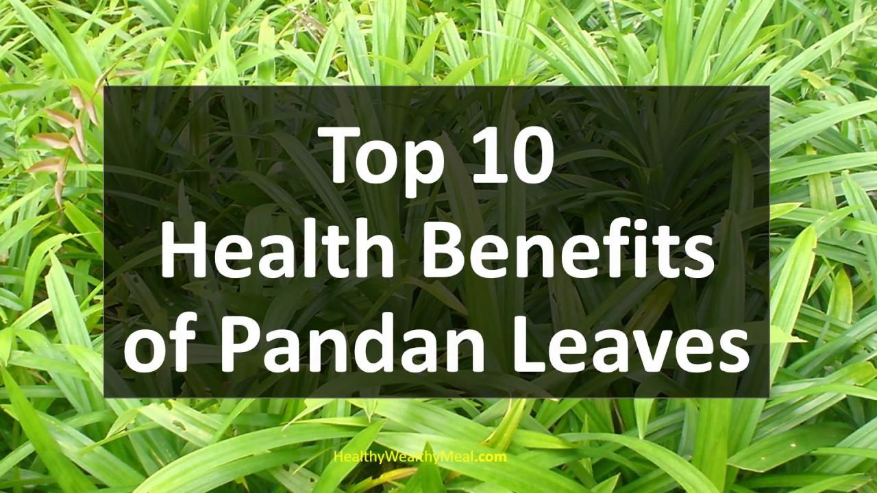 Top 10 Health Benefits of Pandan Leaves - Healthy Wealthy Tips