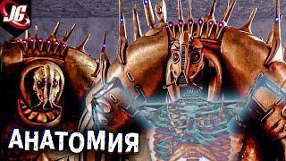 АНАТОМИЯ ПРИШЕЛЬЦЕВ | Пятый элемент 1997