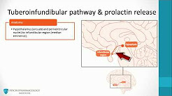 Dopamine pathways, antipsychotics and schizophrenia