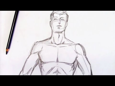 How to Draw the Male Torso (Step by Step)