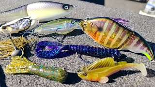 Bass Fishing: Top 10 Baits of 2020!!