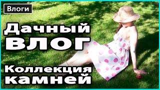 видео сад / Поиск по тегам / Мои дачи
