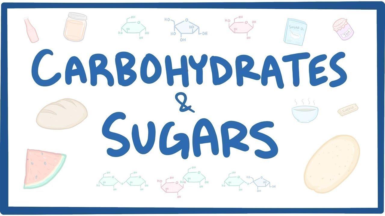 Carbohydrat và đường – Hóa sinh