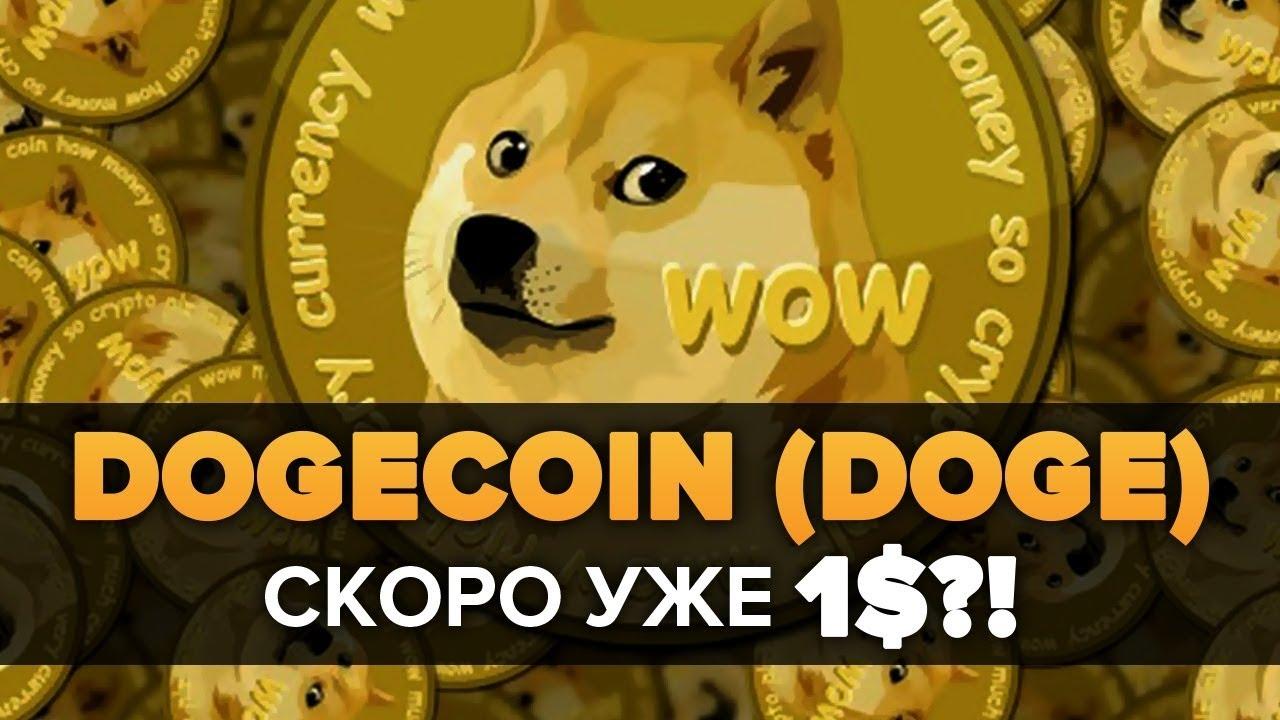 Сколько в одном биткоине doge как научится работать в форексе