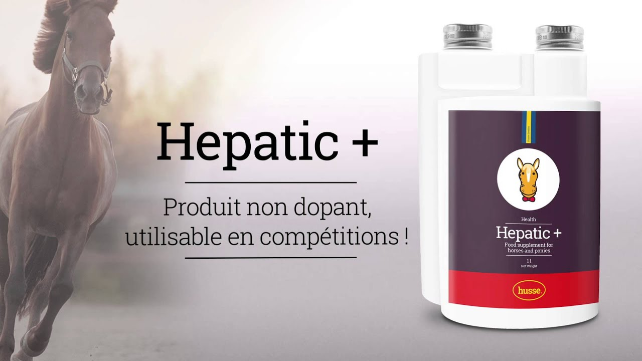 Draineur hépatique pour cheval Hepatic+ - YouTube