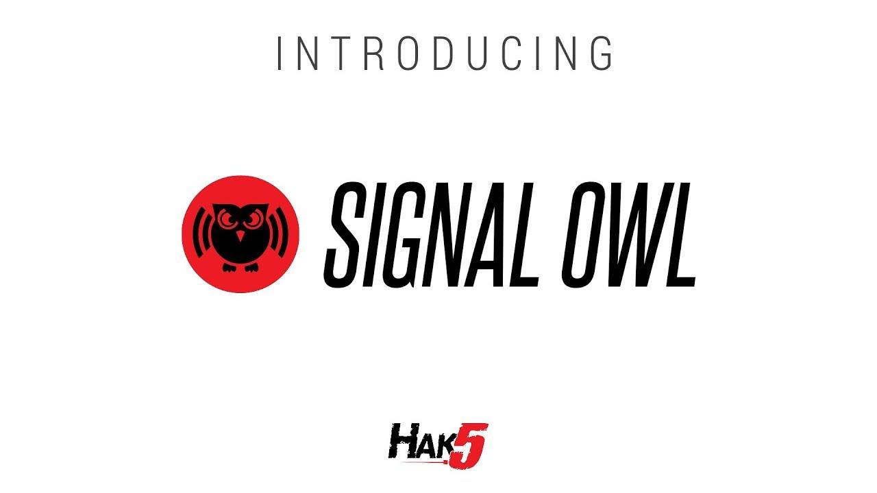 Signal Owl