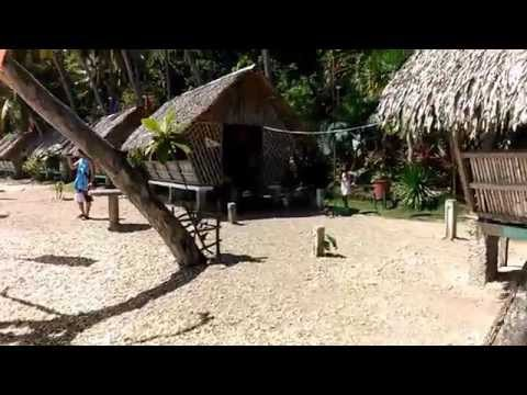 Recuerdo Beach Resort Part 2 | Catmon Cebu