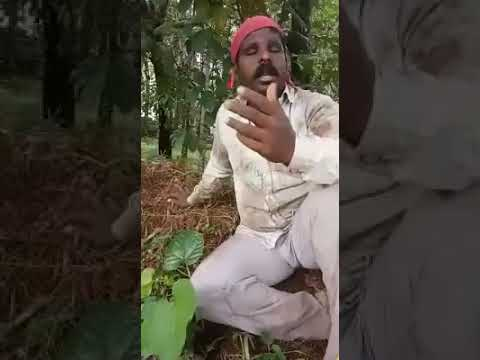 Unnai kaanadhu cover(Vishwaroopam)