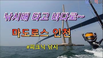 낚시배타고 바다로~ 마도로스 인천 피크닉낚시