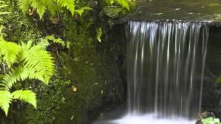 Красивые водопады мира.(Это видео создано с помощью видеоредактора YouTube (http://www.youtube.com/editor), 2014-10-06T21:19:45.000Z)