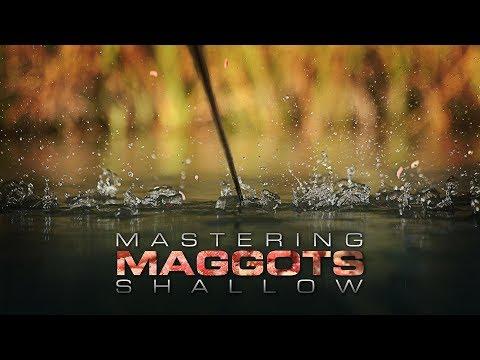 MASTERING MAGGOTS SHALLOW - Rob Swan