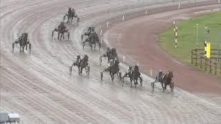 Vidéo de la course PMU PRIX LUNCH I PEGASUS 99 KR