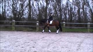 Deejay Texel v  Westenwind maart 2015