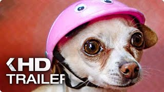 DOG DAYS Trailer German Deutsch (2019)