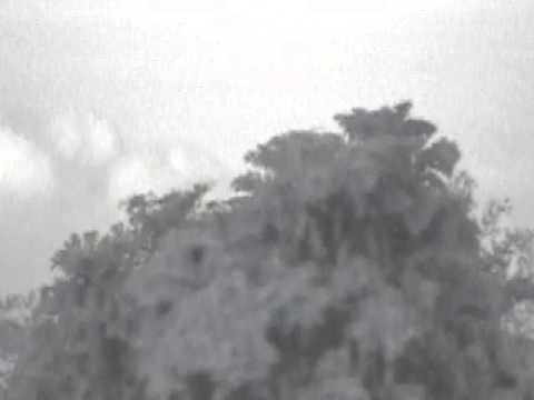 UFO Sighting Video: 19th January 2016 - Trinidad & Tobago