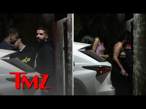 Drake Leads Parade of Smoking Hot Chicks in WeHo | TMZ