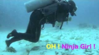 ダイビング・ドット・コミュで紹介しています(http://diving-commu.jp/...