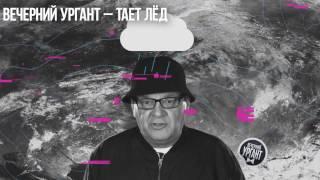Пародии на песню Грибы-Тает лед