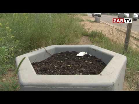 Вазоны в стиле надгробий: новые кашпо читинцы приняли за урны