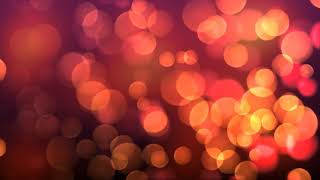 Beautiful Red Pink Blurred Bokeh Motion | Free Animation Background