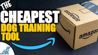 Teach These COOL Dog Tricks Using Your Empty AMAZON Boxes!