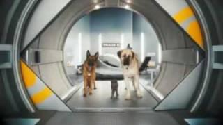 Como Perros y Gatos 2 (Trailer)