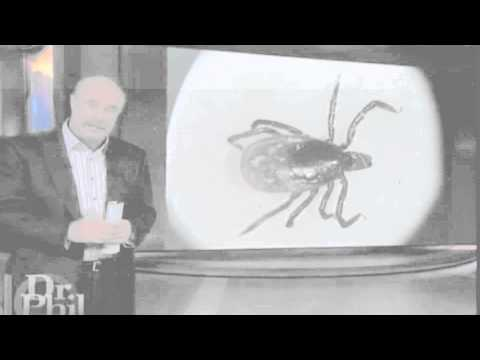 Lyme Disease Cure? - Dr  Phil - YouTube
