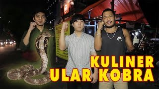 Download lagu KULINER ULAR KOBRA Feat Kim Hyung Soo MMA Fighter !!! Mp3