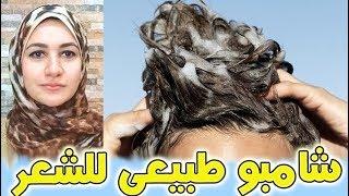 أفضل شامبو طبيعى للشعر التالف | يجعل شعرك ناعم مفرود طويل قوى صحى