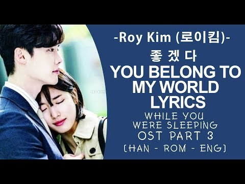 Roy Kim - You Belong To My World lyrics 좋겠다 -  While You Were Sleeping OST Part 3