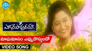Egire Pavurama Songs || Maagha Maasam Video Song || Srikanth | Laila | JD Chakravarthy