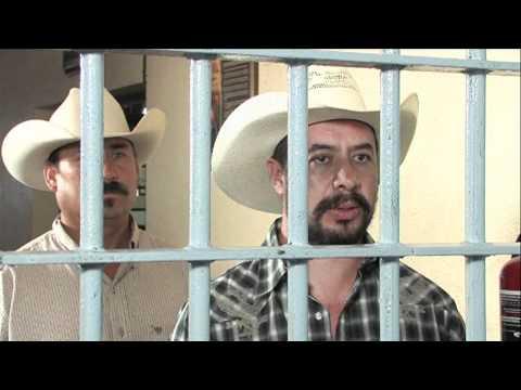 Trailer Oficial: Vuelve Jesus Perez