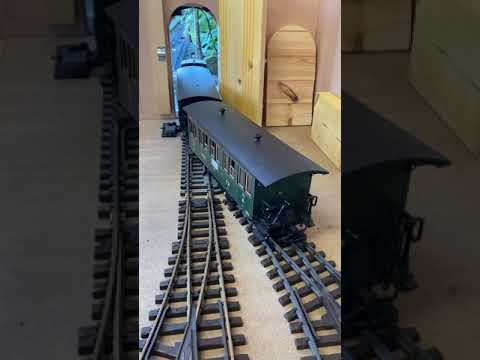 G scale train running into the shed