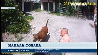 В Днепре полицейских покусала собака