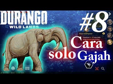 Cara solo Gajah  - Durango Wild Lands Indonesia