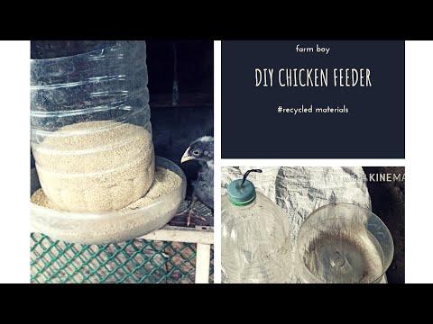 DIY Chicken feeder walang