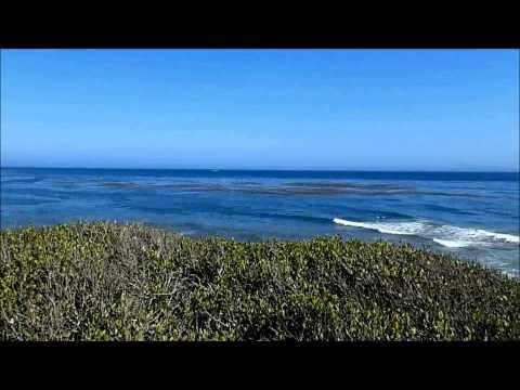 050 - GLOBE BALLIN!!! - June 24, 2015 - Santa Barbara, CA