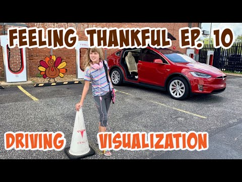 feeling-thankful-for-the-driving-visualization-tesla-feature---episode-#10