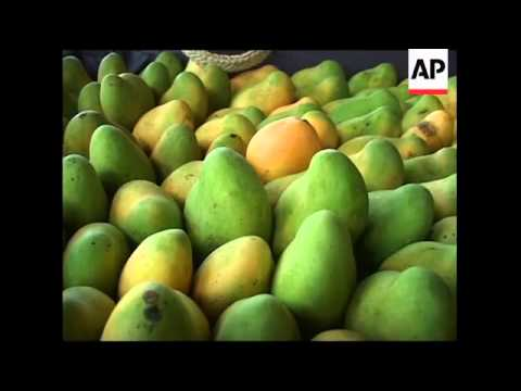 AP looks at Haiti's mango industry, one of nation's biggest exports
